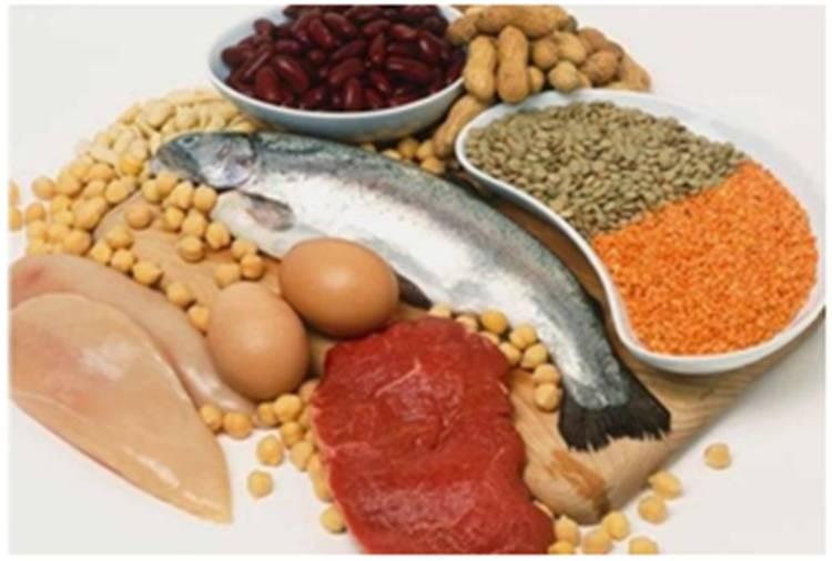vida sana las proteínas